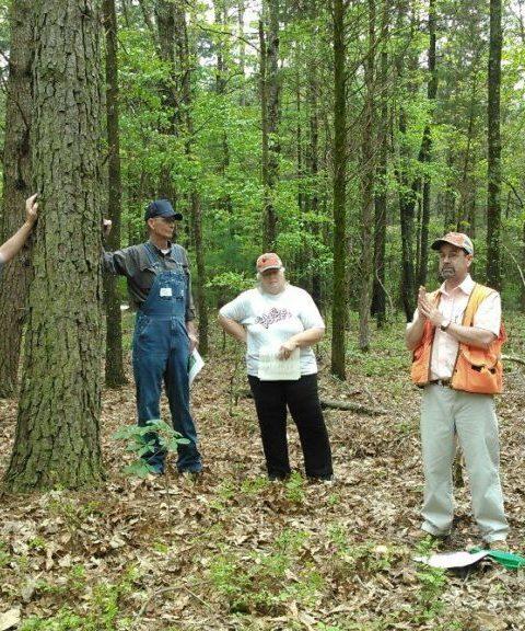 Forest Management Workshop